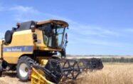 Tahıl üreticilerine 'erken hasat' uyarısı