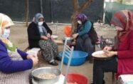 Kadınların tohumluk yer fıstığı kırma mesaisi