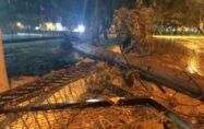 Osmaniye'de sağanak ve fırtına çatıları uçurdu, ağaçları devirdi